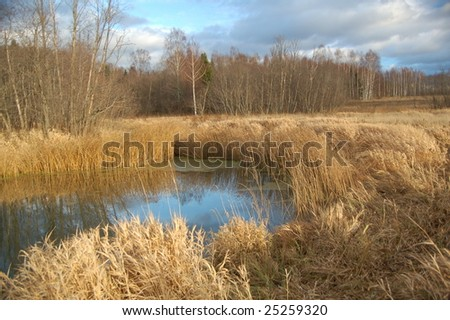 view of the blue backwater on the forest background in the autumn sunny day - stock photo