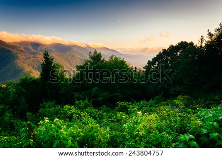 View of the Blue RIdge at sunrise, seen from Mt. Mitchell Overlook on the Blue Ridge Parkway in North Carolina. - stock photo