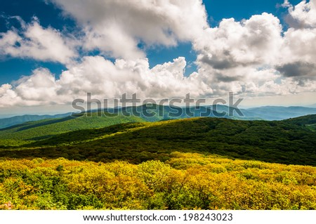 View of the Blue Ridge Mountains from Stony Man Mountain, in Shenandoah National Park, Virginia. - stock photo