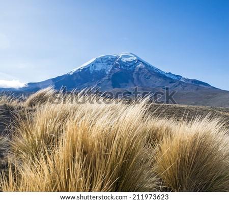 View of the Chimborazo volcano on a sunny morning - stock photo