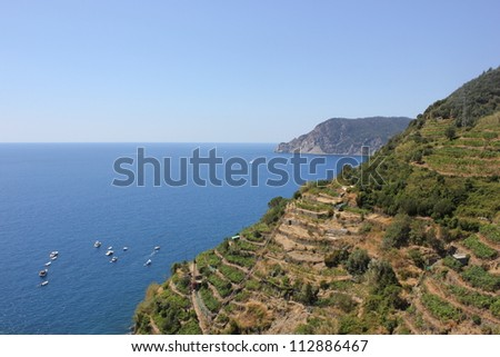 View of the Cinque Terre village coastline of Vernazza, vine and vineyards Italy - stock photo
