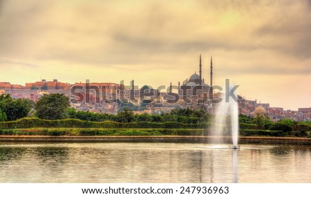 View of the Citadel with Muhammad Ali Mosque from Al-Azhar Park - Cairo, Egypt - stock photo