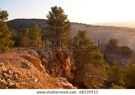 View of the forest in Israel. Area Jimal. - stock photo