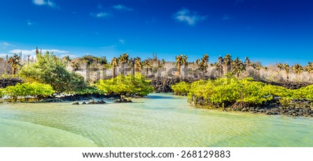 View of the Galapagos - stock photo
