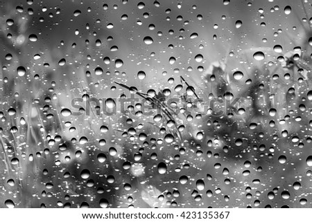 View of the grass through the window glass covered by raindrops, black and white - stock photo