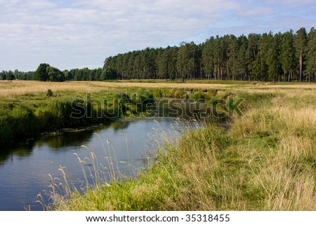 view of the grassy riverside near the forest in bright summer day - stock photo
