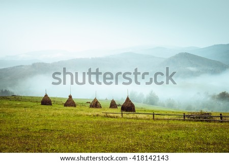 View of the green hills which glowing by sunlight. Dramatic scene and picturesque picture. Location place Carpathian, Ukraine, Europe. Beauty world. Retro and vintage style. Instagram toning effect. - stock photo