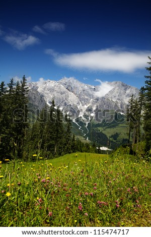 View of the Hochkoenig Mountains in the Austrian Alps from Muehlbach - stock photo