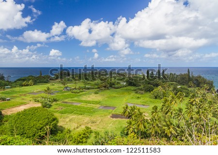 View of the Keanae peninsula in Maui, Hawaii with it's taro fields with blue Pacific Ocean in the background - stock photo