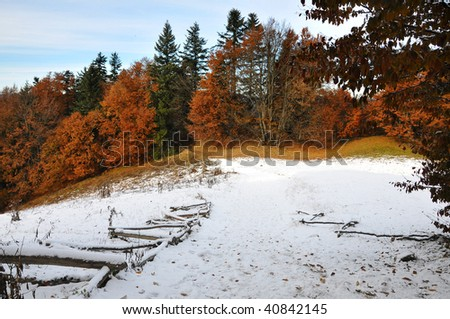 view of the landscape  Polish golden autumn in the forest by Pieniny - stock photo