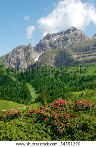 view of the mountain Brenta-Dolomites Italy - stock photo