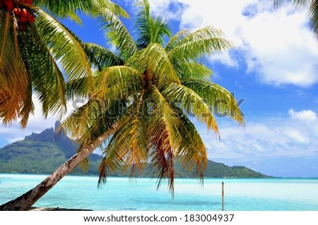 View of the mountain of Bora Bora island with palms, shadows and lagoon - stock photo