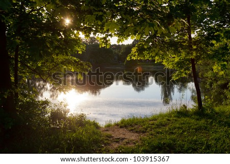 view of the pond through the bushes - stock photo