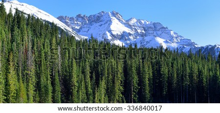 view of the snow covered mountains in the back of green conifer forest - stock photo