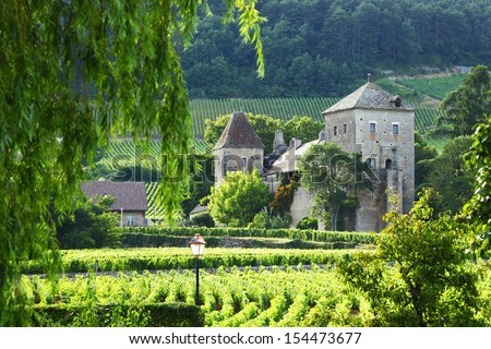 View of the vineyards in Gevrey Chambertin, France - stock photo