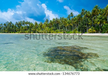 View of tropical beach with transparent water on foreground, horizontal - stock photo