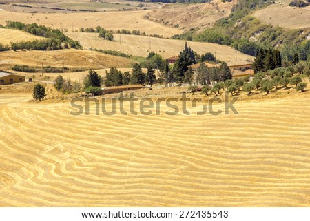 view of typical Tuscany landscape in summer, Italy - stock photo