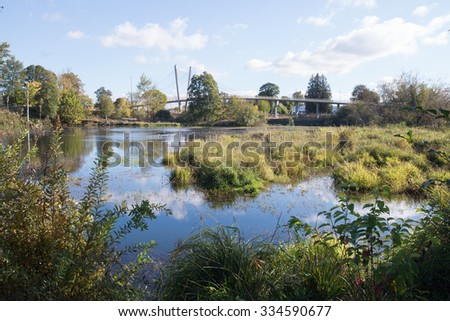 View of wetlands from a birdwatching path in the middle of a city. - stock photo