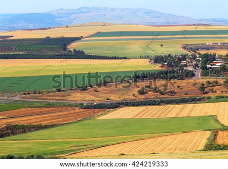 View on agriculture valley. Green fields,arable lands,olive plantations and wheat fields.Valley Arbel. In the background Galilee mountains. Agricultural theme. Harvesting. Galilee, Israel - stock photo