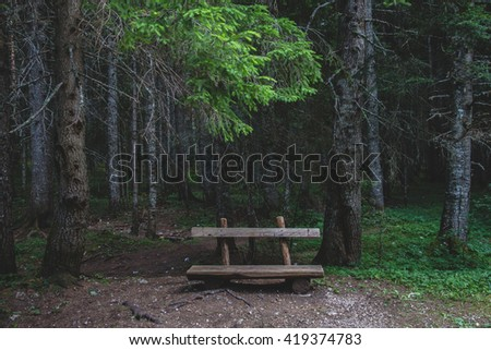 View on empty shabby wooden bench in forest  - stock photo