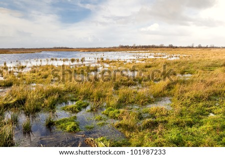 view on flooded field and blue sky with white clouds - stock photo