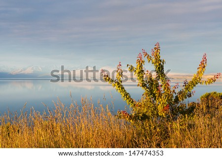 View onto the Lake Pukaki on the South Island of New New Zealand. Picture taken from the South end of the lake. - stock photo