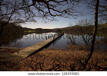 view out to a jetty at night through trees - stock photo