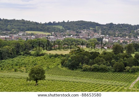 View over Dorking with vineyard in foreground, Surrey, England - stock photo