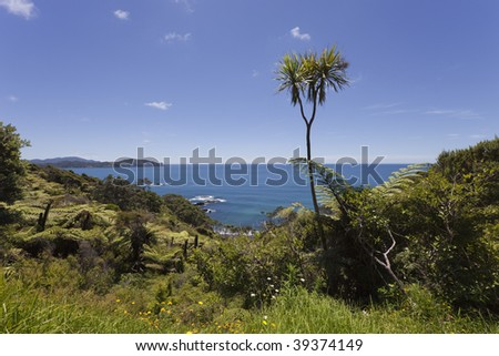 View over Pacific Ocean, North Island, New Zealand - stock photo