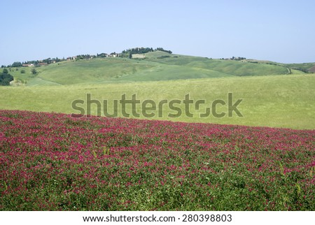 View over rural Tuscany, Italy - stock photo