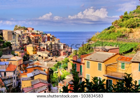 View over the Cinque Terre village of Manarola, Italy - stock photo