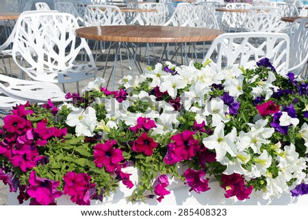 View summer urban elite cafes in recreation area on beach, decorated with richly blooming flowers. Selective focus and space in the zone blurring compositions for production of advertising and text. - stock photo