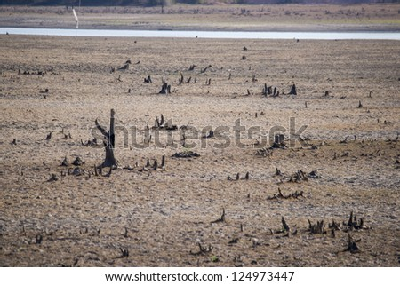 view to earth with cracks and grass - stock photo
