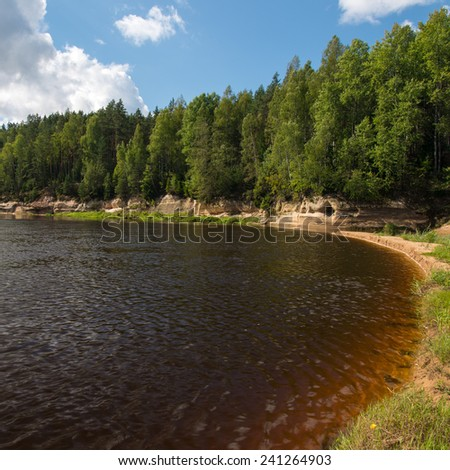 view to the mountain river in summer surrounded by forest and sandstone cliffs - square image - stock photo
