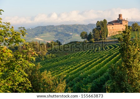 Views of the Langhe in Piedmont, near the city Barolo - stock photo