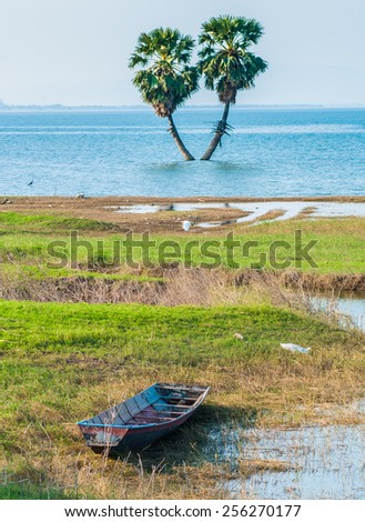 Views of the river the old boat balanced Sugar palm tree on background. - stock photo