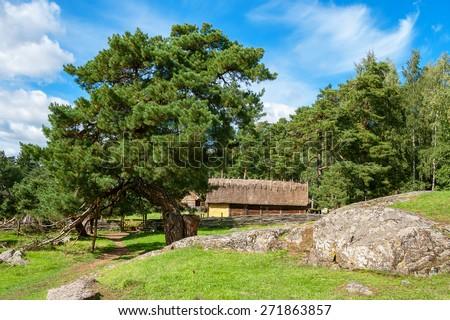 Vikings village. Sweden, Scandinavia, Europe - stock photo