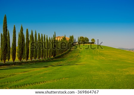 Villa in Tuscany with cypress road and blue sky, idyllic seasonal nature landscape vintage hipster background - stock photo
