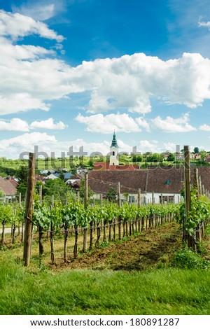 Village in Weinviertel - stock photo