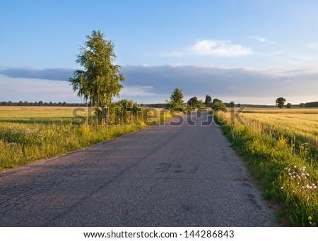 village road at sunset. landscape - stock photo