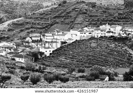 Village Surrounded by Vineyards on the Hills of Portugal, Stylized Photo - stock photo