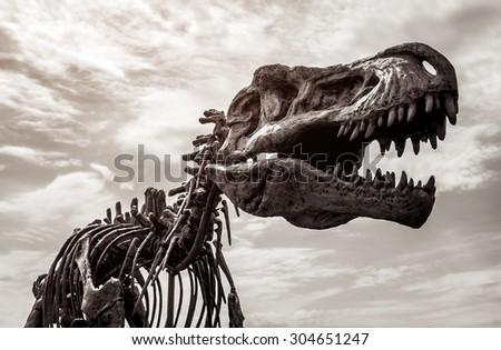 Vilnius, Lithuania- July 28, 2015: Tyrannosaurus rex skeleton against cloudy sky background. Toned image. Dinosaur park in Vilnius - stock photo
