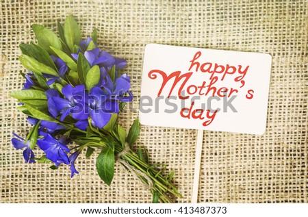 Vinca - flower plants bouquet. Romantic date, invitation, sweet wish concept. Happy Mothers day card - stock photo