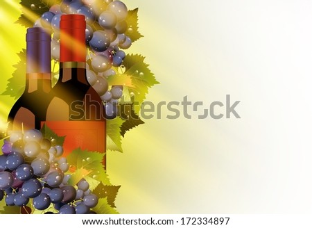 Vine and Grapes Illustration with Solid White Copy Space. Autumn Sun Rays Coming Through. - stock photo