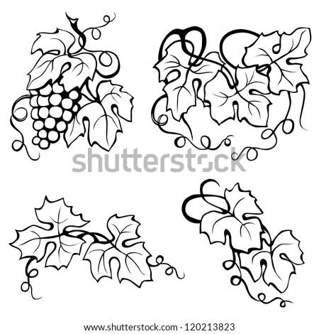 Leaves Paintings And Drawings Vine Leaves Drawing Black And