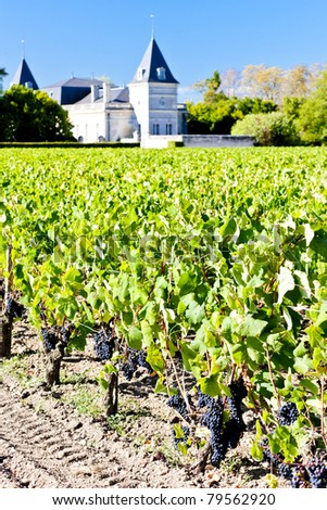 vineyard and Chateau Tronquoy Lalande, Saint-Estephe, Bordeaux Region, France - stock photo