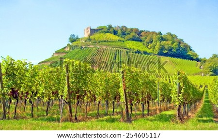 vineyard and old castle, staufen, germany  - illustration based on own photo image - stock photo
