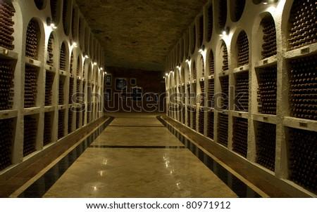 vineyard cellar with old bottles - stock photo