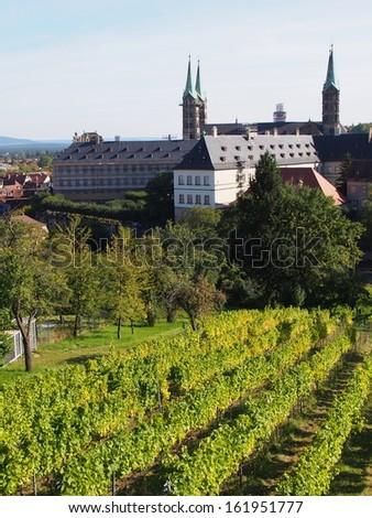 Vineyard in Bamberg, Germany - stock photo