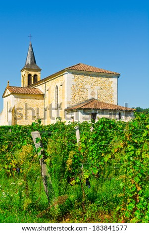 Vineyard on the Background of Church in France - stock photo